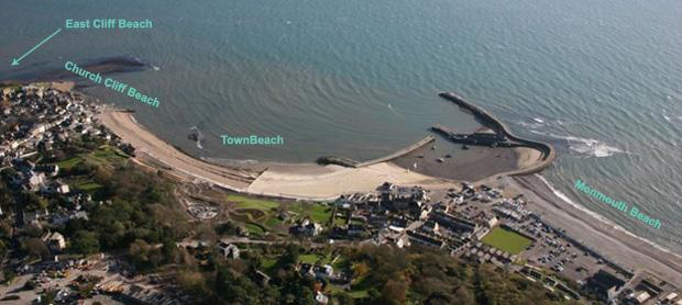 dog friendly beaches lyme regis